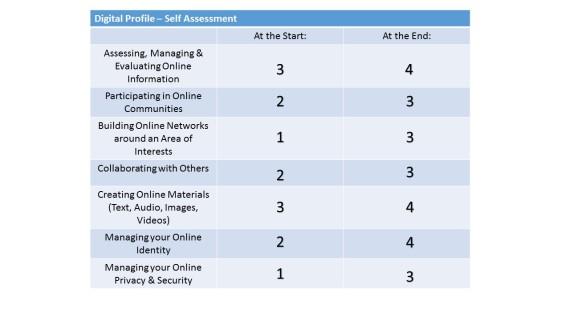 digital profile - self assessment